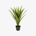 Plantas artificiales para recibidor