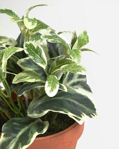 Kunstplant Aucuba