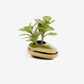 Plantas artificiales para baño