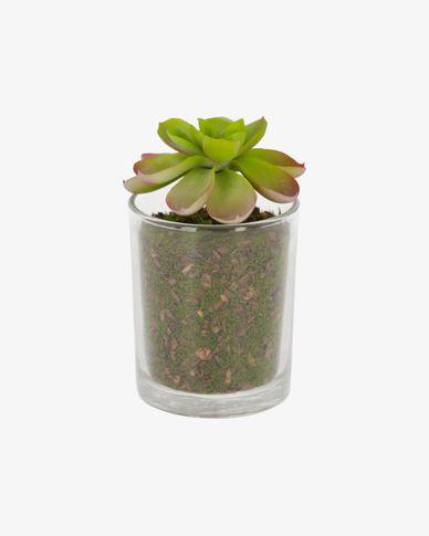 Aeonium artificial plant