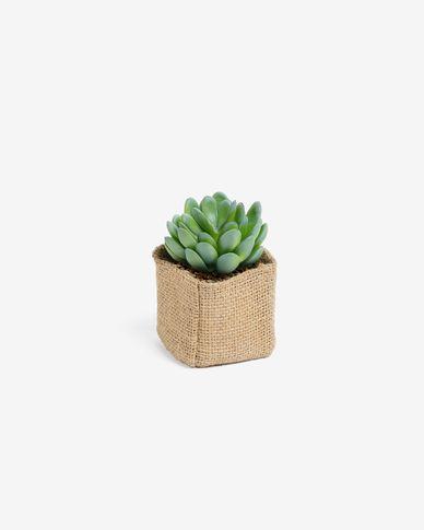 Planta artificial Pachyphytum con mactea de rafia natural 10 cm
