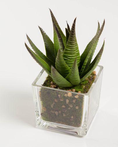 Planta artificial Hawortia con maceta de cristal 15 cm