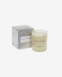 Walk in the Woods aromatic candle