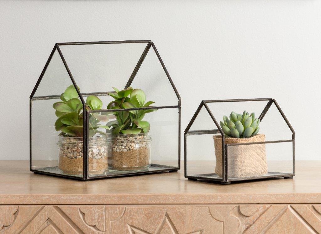 mini-plantas-urna-cristal