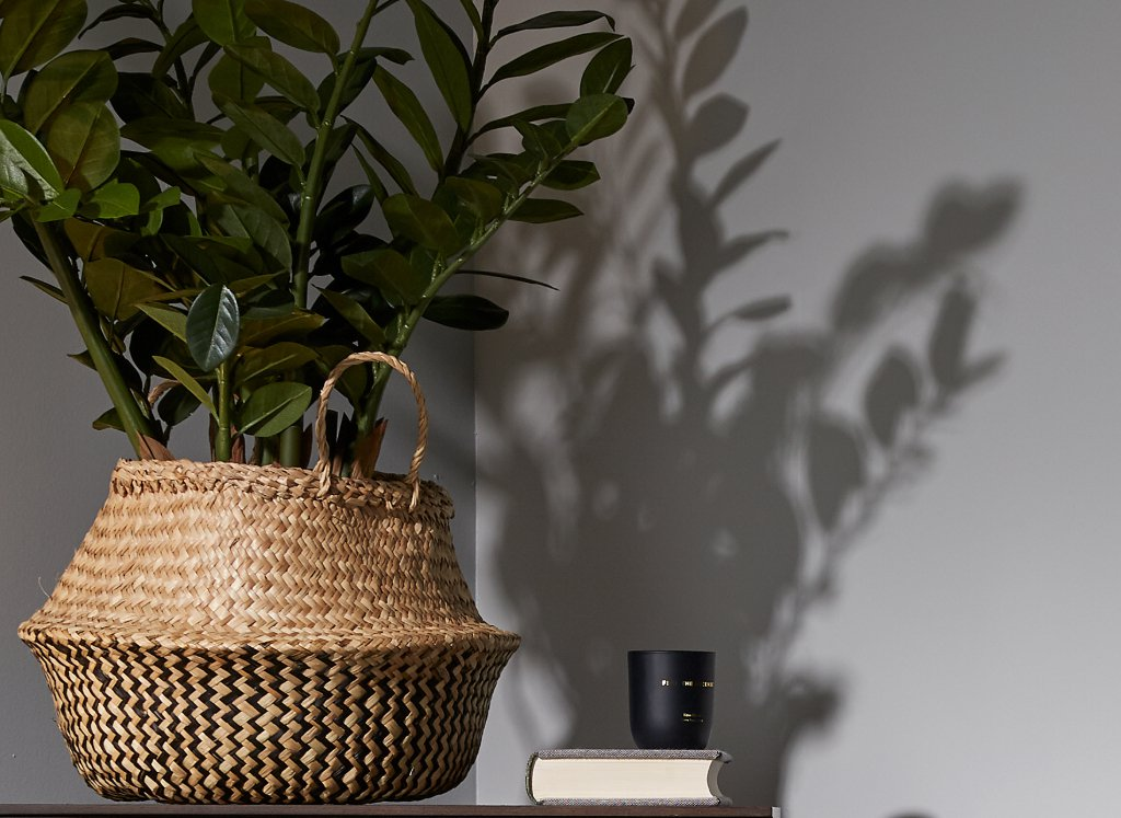 planta-macetero-cesta