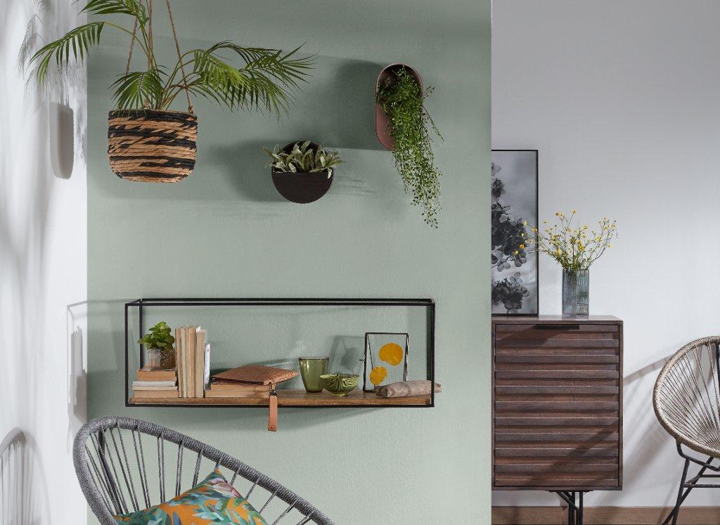 planta-pared