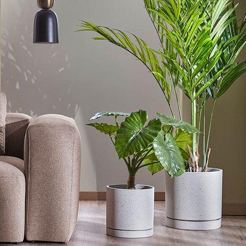 plantas-artificiales-salon.jpg