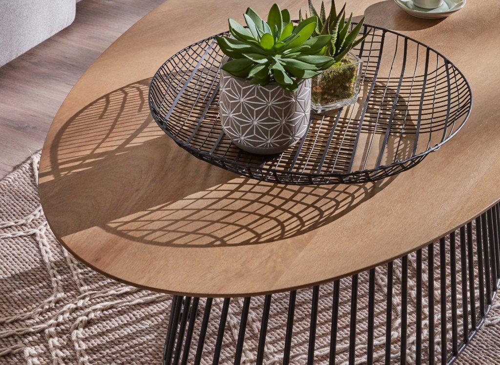plantas-centro-mesa