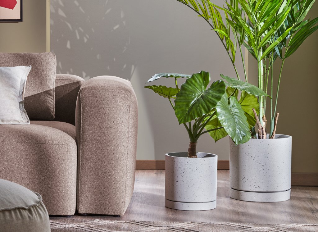 plantas-set-macetas