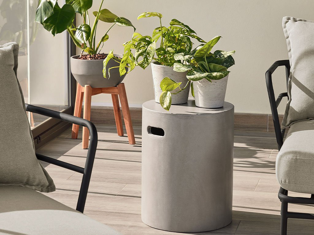 terraza-chill-out-plantas.jpg